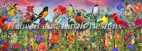 Birds And Blooms Garden Max Colors Material Pack