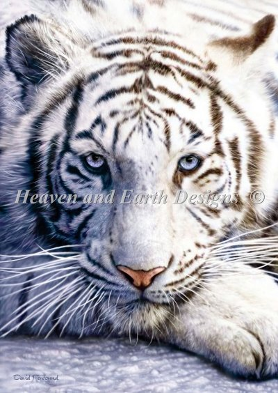 Beginner Mini White Tiger Material Pack