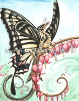 The Swallowtail