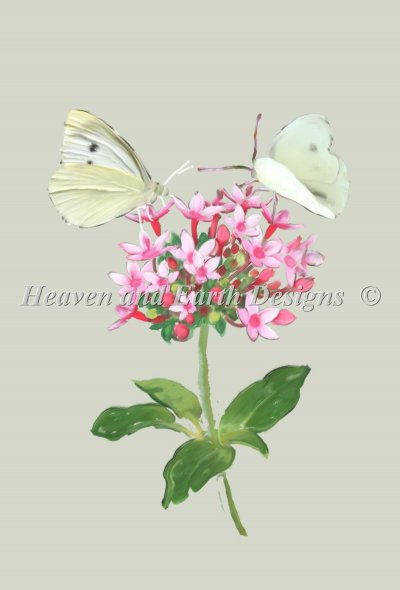 Cabbage Butterfly Material Pack