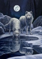 Diamond Painting Canvas - Mini Hunters Moon LP