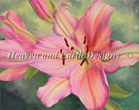 Diamond Painting Canvas - Pink Lily