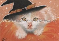 Diamond Painting Canvas - QS Kitty Witch