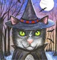 QS Witch Cat