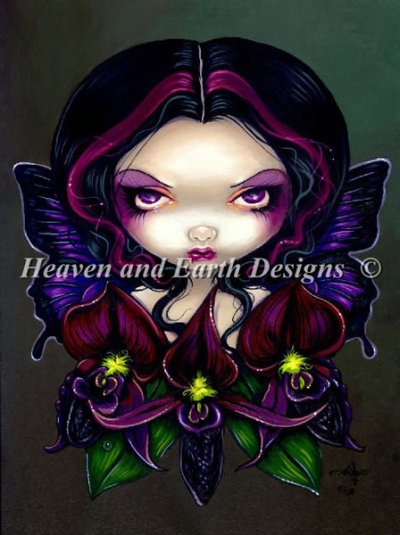 QS Black Orchid Fairy