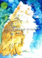 Maine Coon Pride