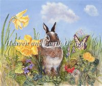 Bunny In Meadow