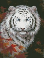 White Tiger Autumn