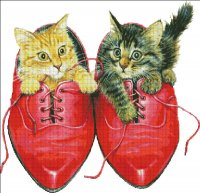 Kittens in Rons Red Shoes
