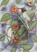 Hummingbirds on Lantana