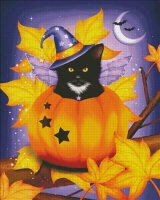 Pumpkin Cat Magic