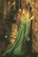 Mini Secret Door
