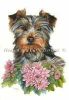 Yorkshire Terrier Material Pack