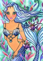 QS Caribbean Blue Mermaid