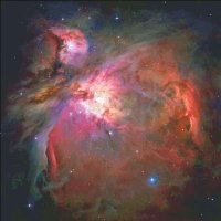 Great Orion
