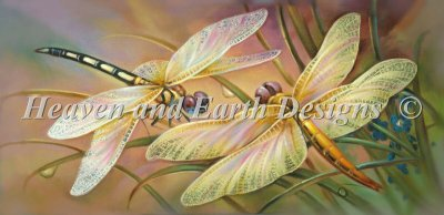 Golden Dragonflies