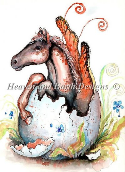 QS Fairy Foal Hatchling