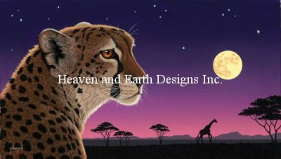 Cheetah Twilight