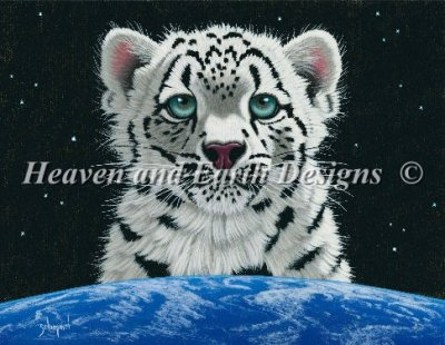 Snow Leopards World