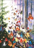 Supersized Butterfly Woods Max Colors