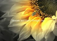 Supersized Sunflower Bee Material Pack