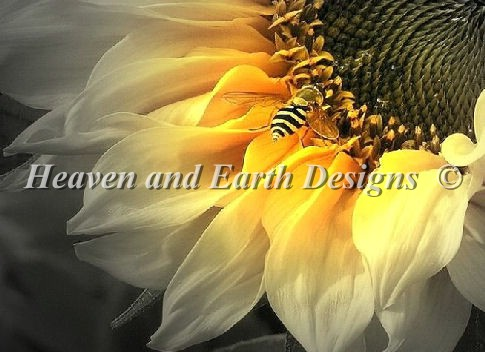 Sunflower Bee Material Pack