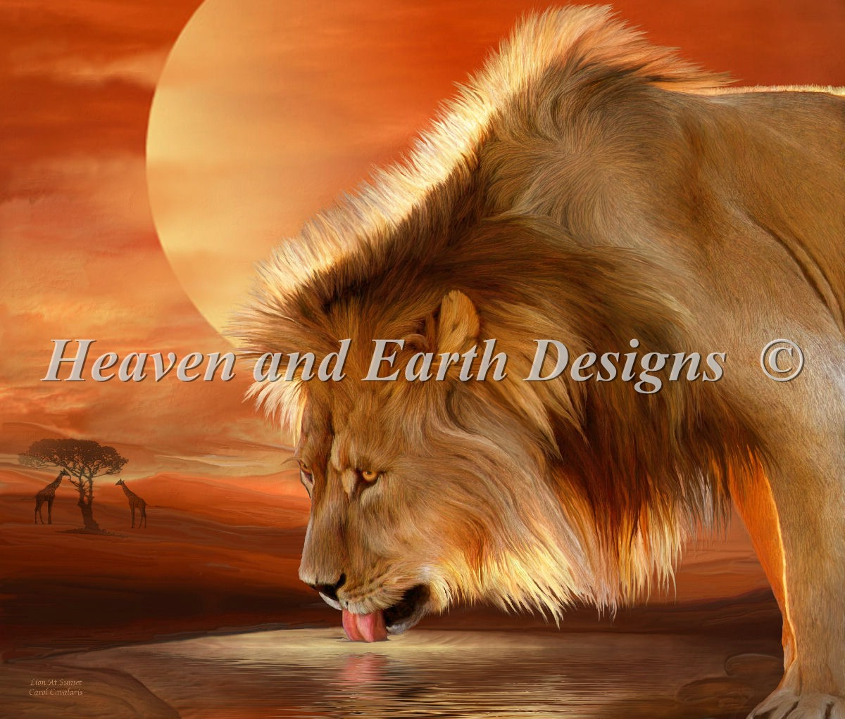 Lion At Sunset Material Pack