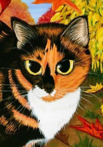 QS Calico Cat