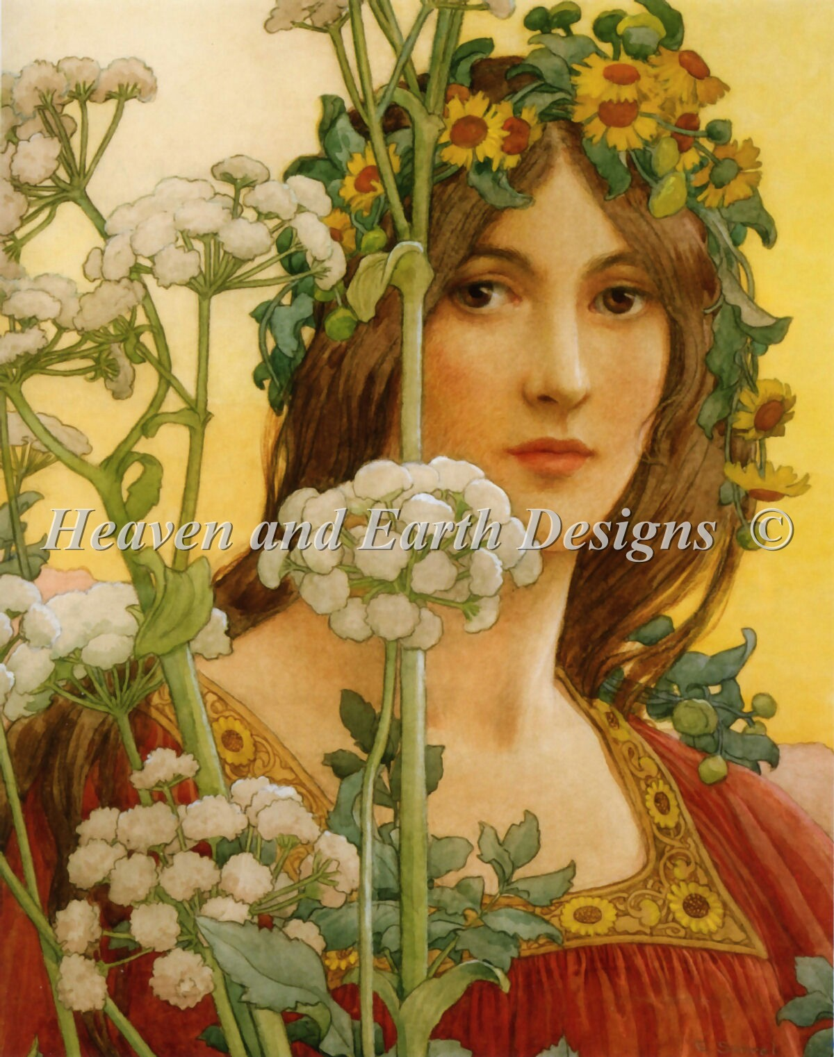 Our Lady Of Cow Parsley Max Color