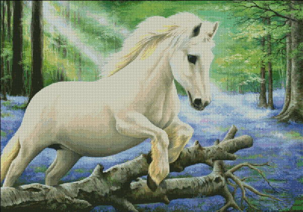 White Pony In Bluebell Wood