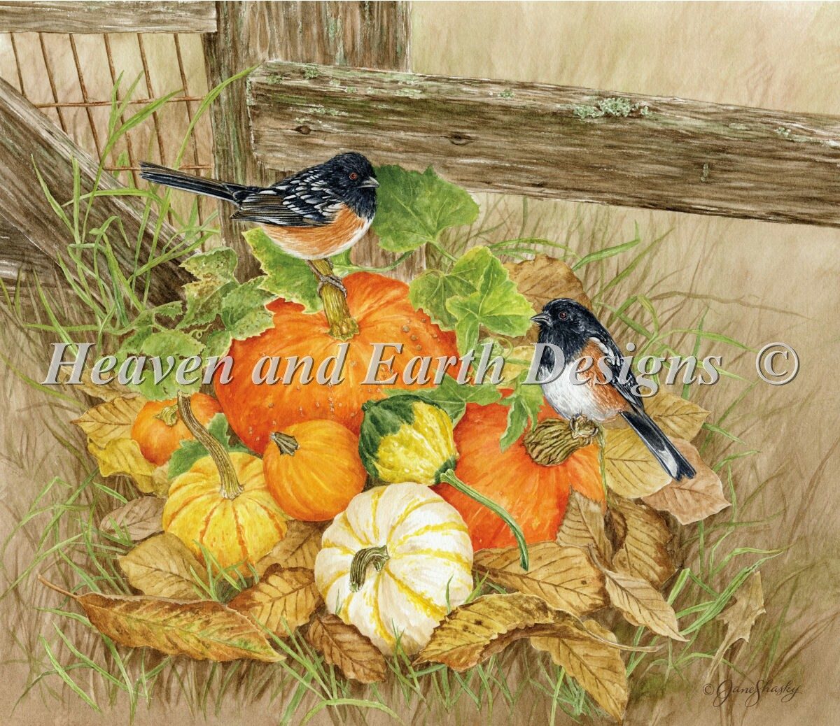 Pumpkins And Towhees Material Pack