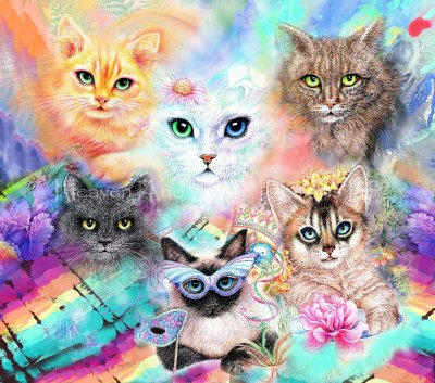 Crazy Cat Lover Material Pack