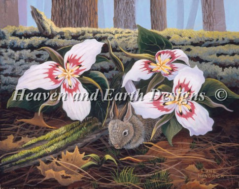 Rabbit With Trilliums