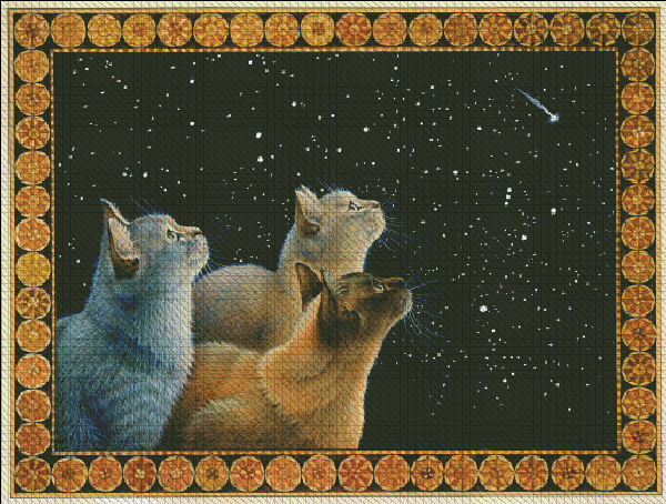 Three Feline Dignities and The Christmas Sky