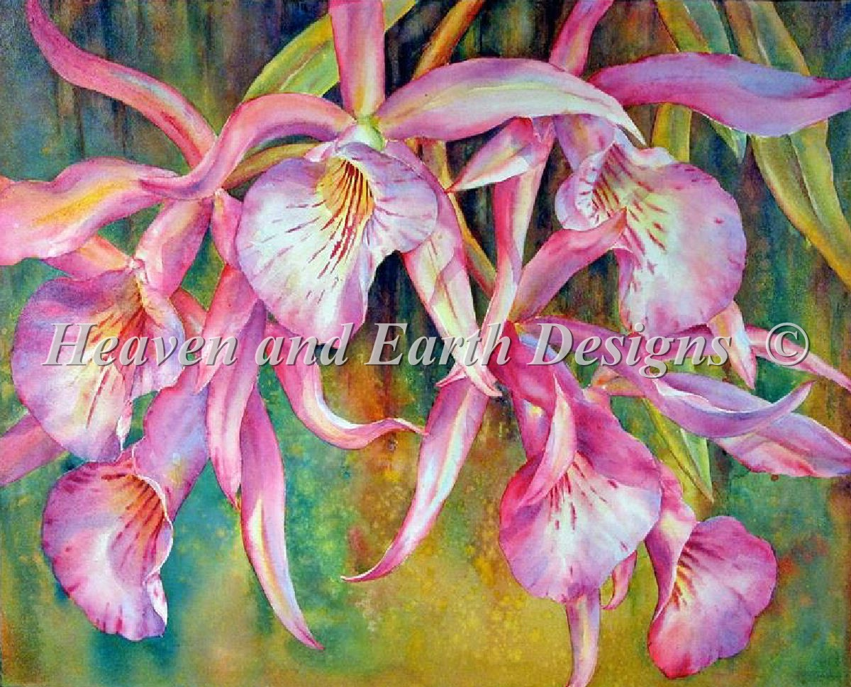 Florida Orchids Material Pack