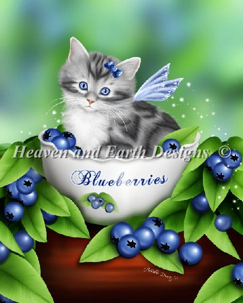 Mini Blueberry Kitten
