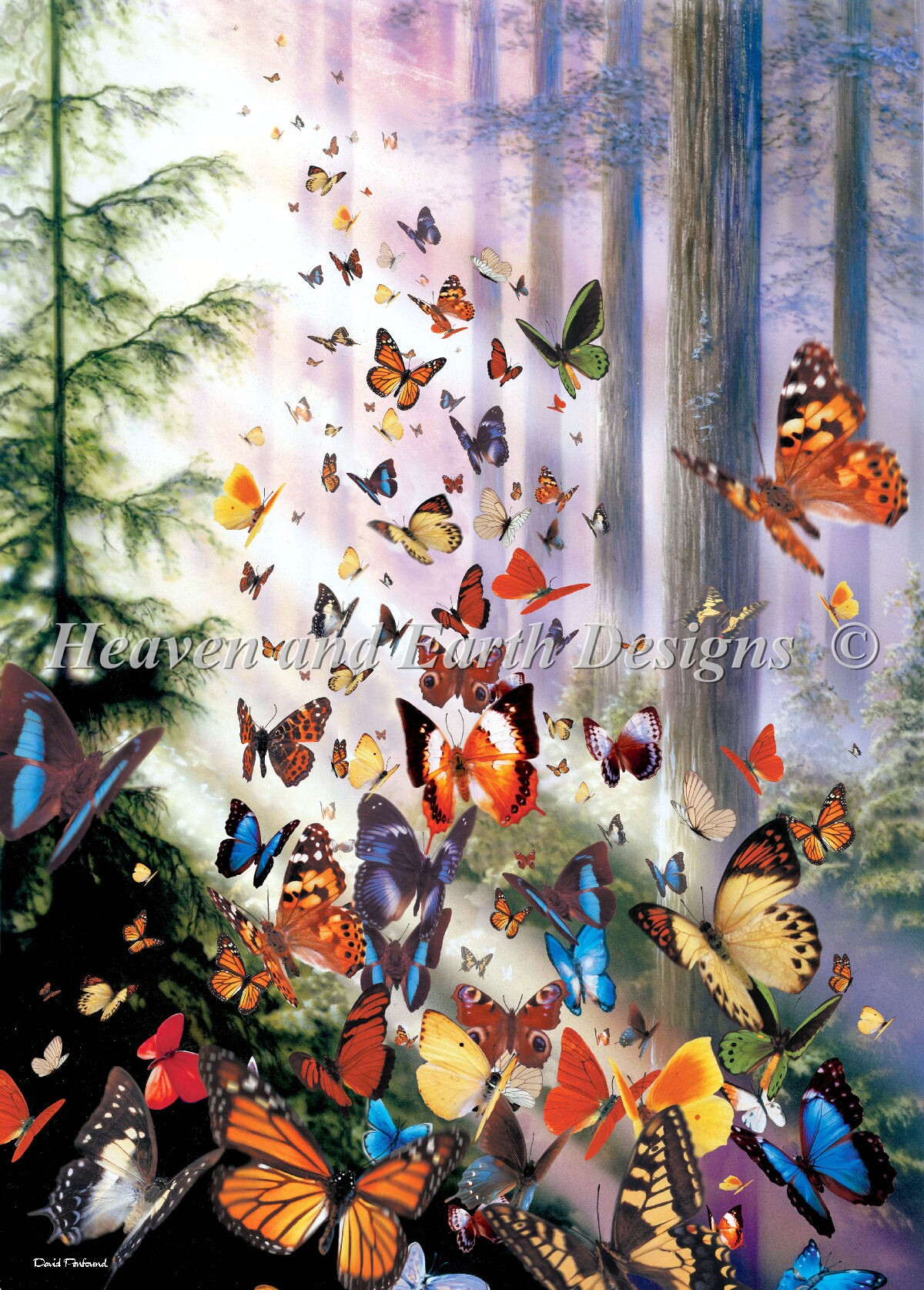 Mini Butterfly Woods Max Color