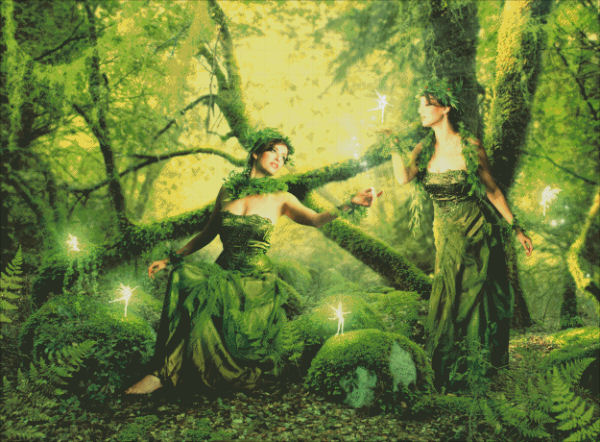 Garden of Glowing Faeries