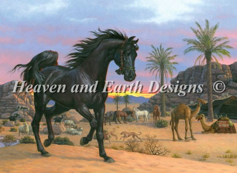 Arabian Sunset - Click Image to Close