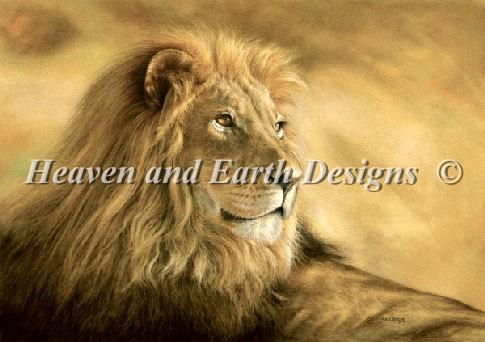 Panthera Leo Lion - Click Image to Close