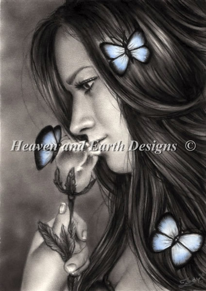 Blue Butterflies - Click Image to Close